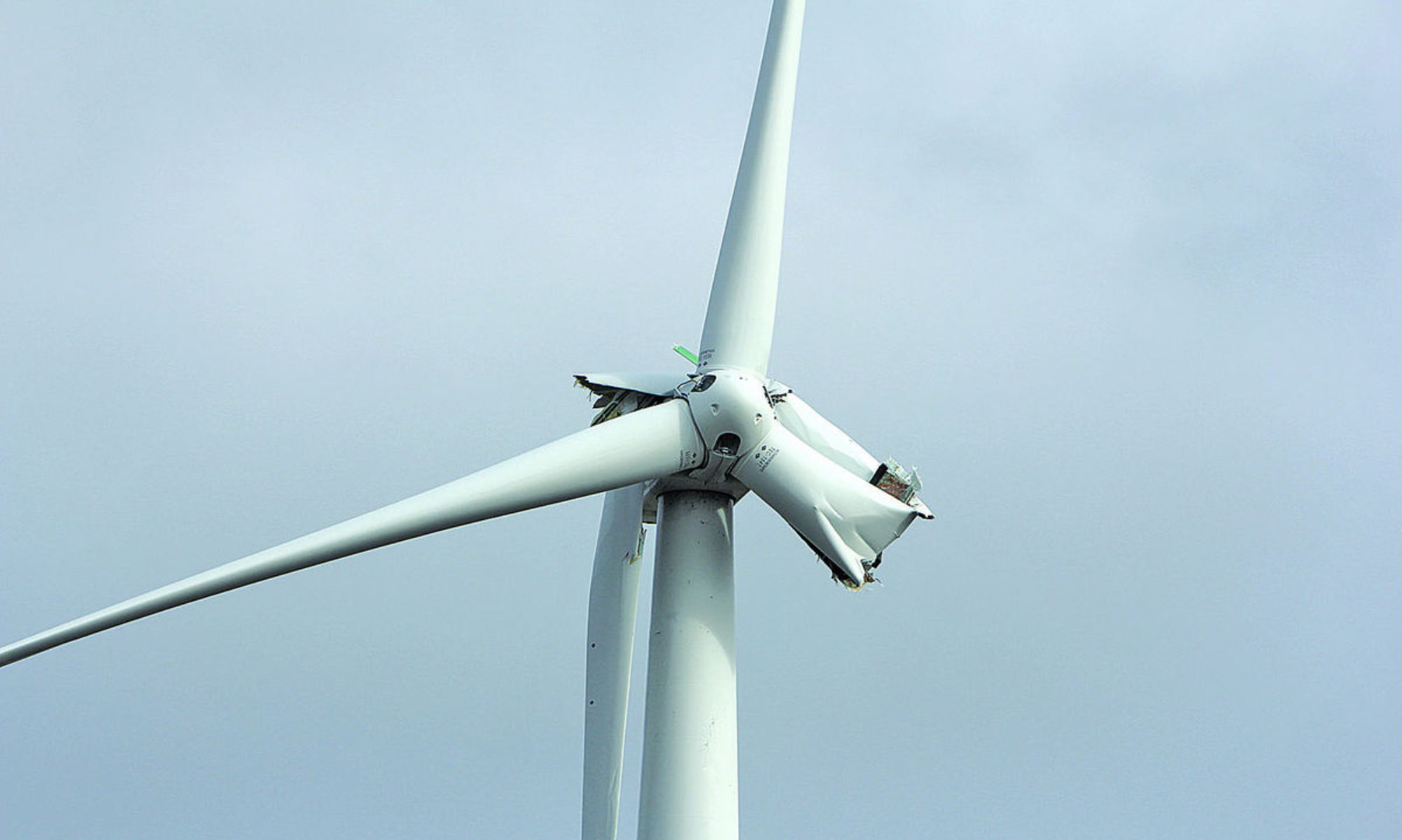 Windpark Rietvelden NEE